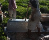דופקים עם הצד השני של את החפירה כדי לעזור לאדמה להפרד מהאמבטיה