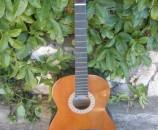 הגיטרה מקדימה - היא עוד לא יודעת מה מצפה לה...
