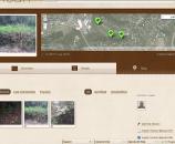 המסך הראשי של המשימה שפתחתי, עם מפת גוגל שמסמנת את מיקומם של העצים