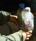 לבנים לבידוד מבקבוקים ופסולת