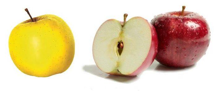 תפוח עץ מתוק