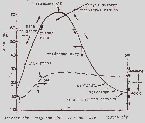 גרף הטמפרטורה של הקומפוסט
