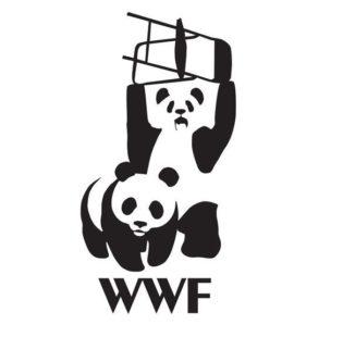 WWF?WTF