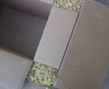 קיפול של ה''כנף'' של הקופסא הפנימית החוצה, מעל הנסורת