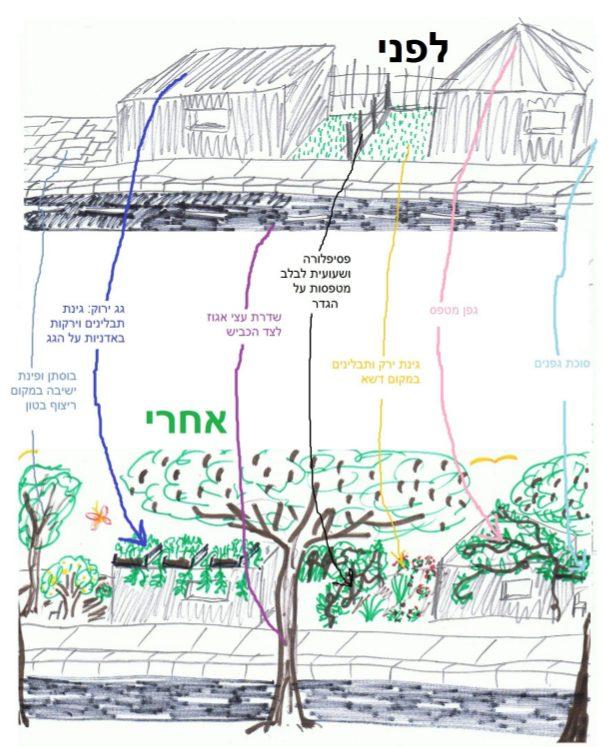  מספר רעיונות לשילוב צמחיית תועלת בסביבת המחיה שלכם