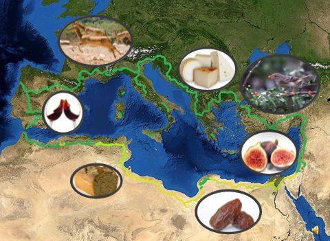 רשת של אתרים בהם מטופחים חורשי מאכל ים-תיכוניים