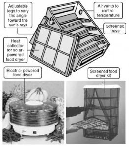 מכשירים שונים לייבוש מזון