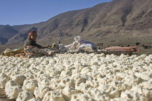 כדורי יוגורט המתייבשים להם בשמש טג'יקיסטן