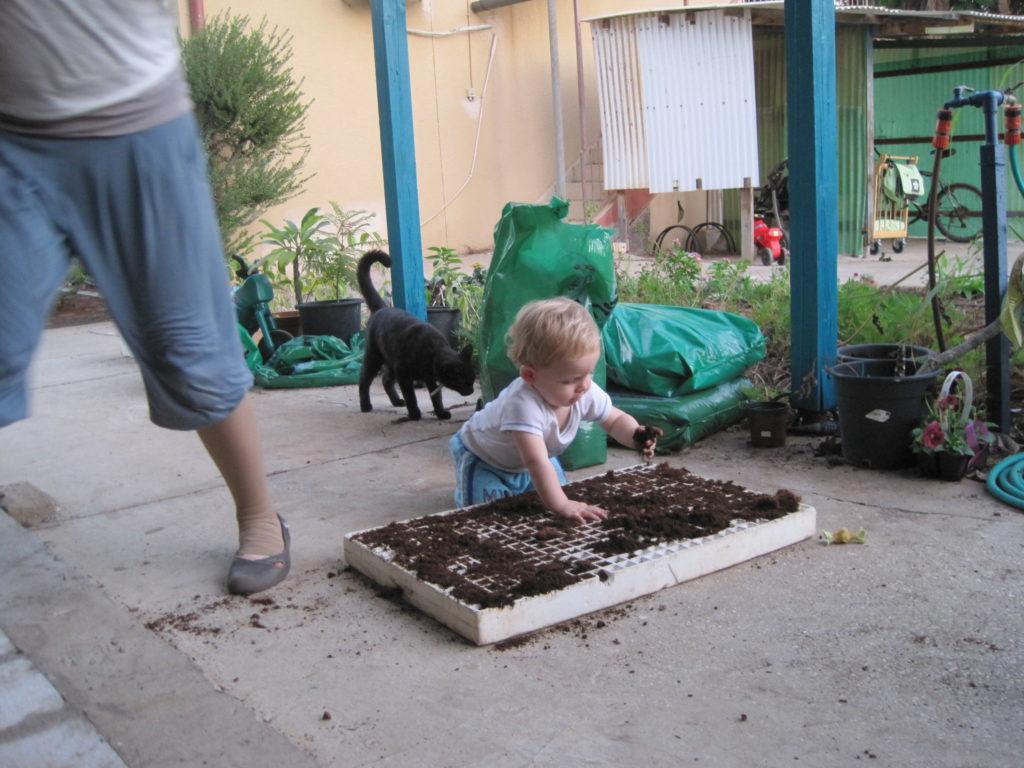 גם הילדים עובדים להנאתם