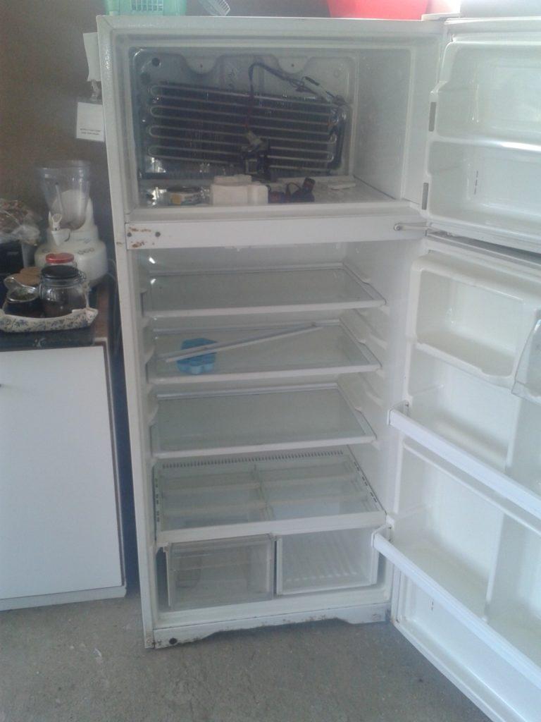 המקרר העירום