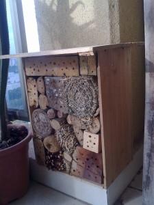 תיבת קינון לדבורי בר - מבט צד