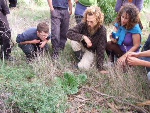 ירון שרמן בהדרכה על צמחי בר למאכל
