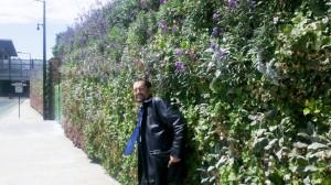 במרכז לונדון השופע בטון, רעש וזיהום גיליתי גן אנכי עצום שמילא את ליבי באושר ושמחה.