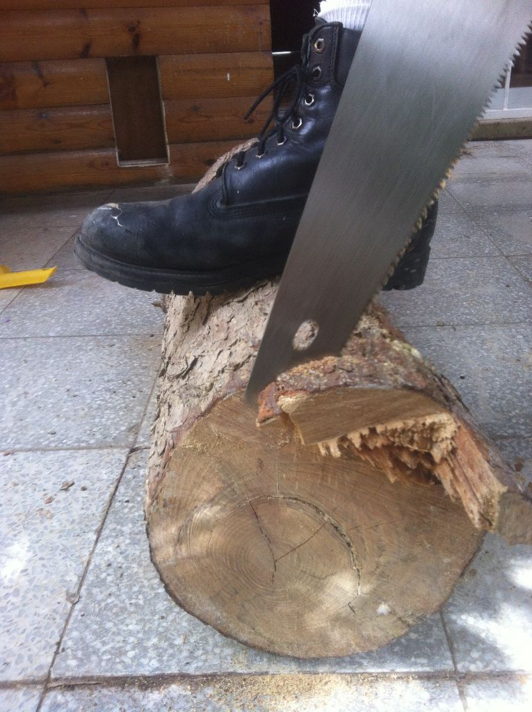 יישור הגזע עץ על מנת לקבל חתך יפה ואחיד