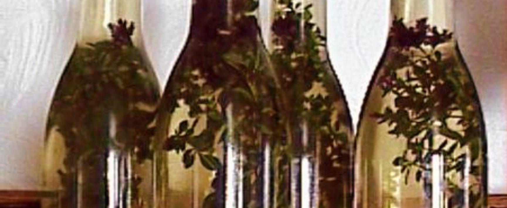 חומץ מבוקבק עם תוספת אורגנו