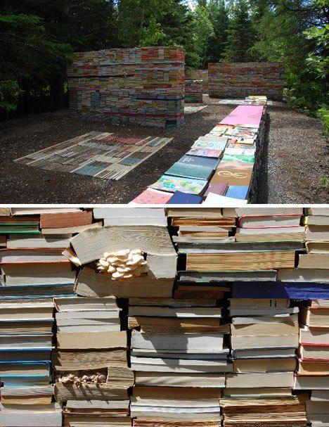 יער פטריות ספרים אם אפשר יער שלם אז למה להסתפק בספר אחד, זאת תמונה מתחילת הדרך יחסית, מעניין לראות איך זה יתפתח.