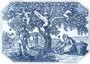 אנשי העצים