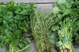 צרורות צמחים