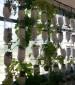 חוות החלון הגדולה במזרח התיכון