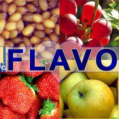 Flavonoid- פעם נקרא ויטמין P