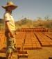 מושא הערצה בכפר - ליה ושדה האדובה