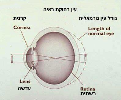 יוגה עיניים- אורך ראיה