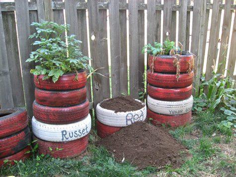 תפוחי אדמה- 5 צמיגים בקלות