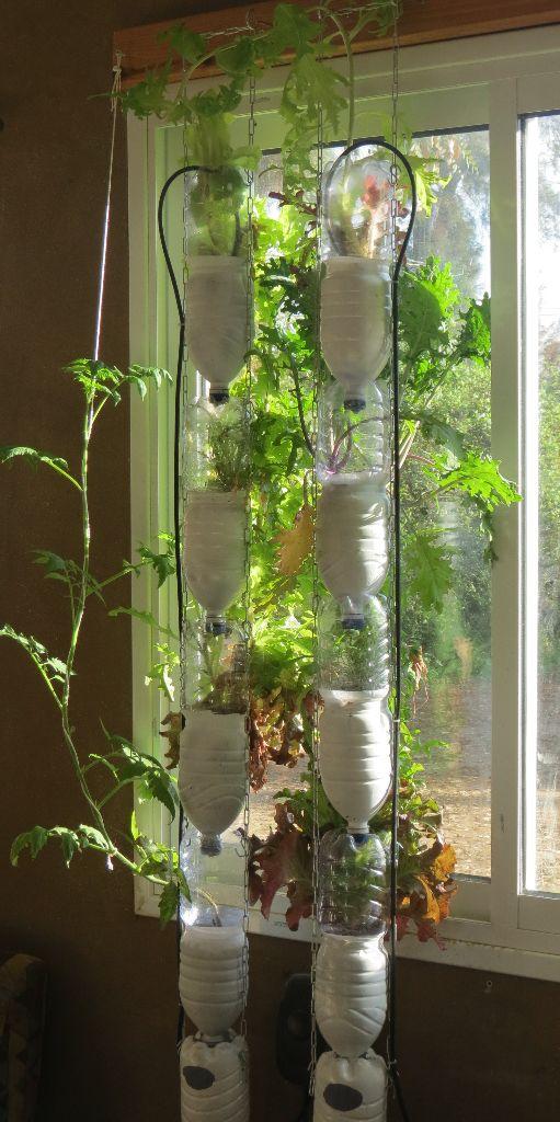 חוות חלון בשמש חתוך