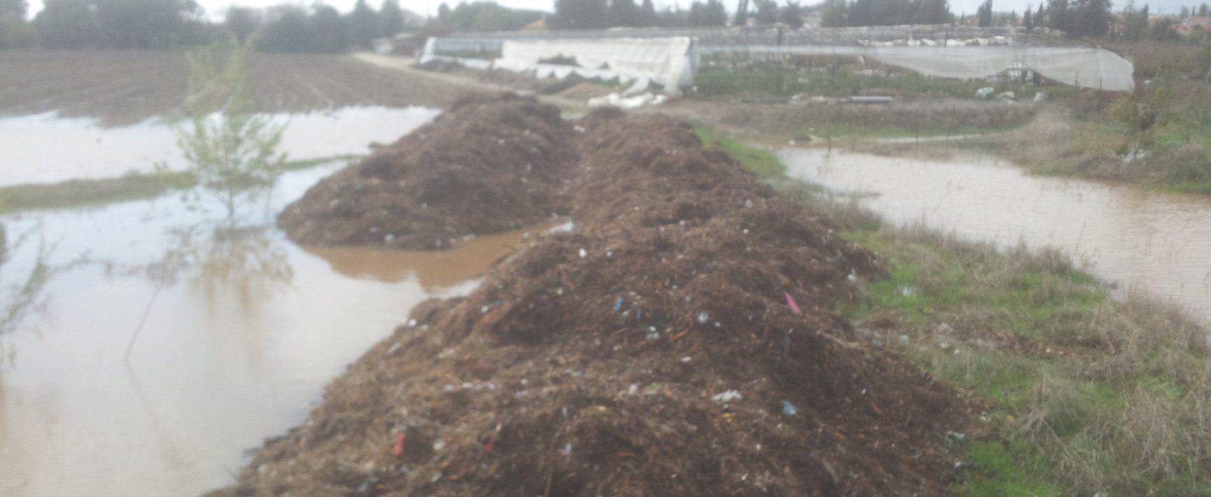 הסווילים מתמלאים בגשמים האחרונים