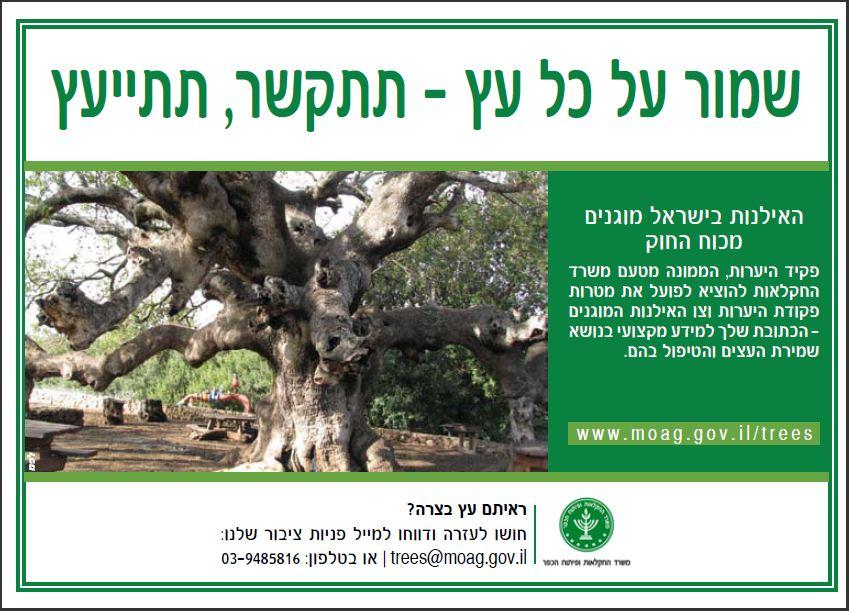 פרסום של משרד החקלאות למען הגנה על העצים