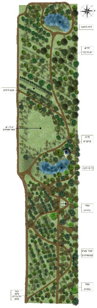 תכנון יער מאכל שדמה עם טקסט הסבר