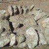 אבנים על רצועת הבטון