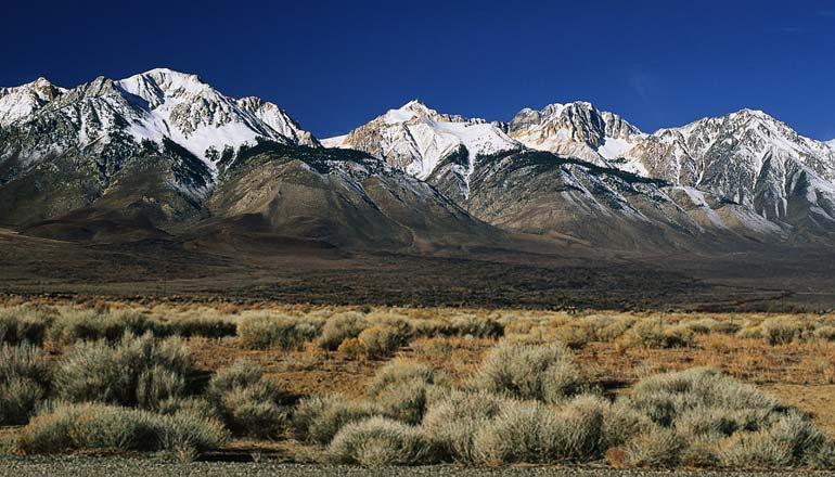 sierra Nevada- אדמה מדברית גרוע בתוספת אצטרובלים מההרים- בידיים