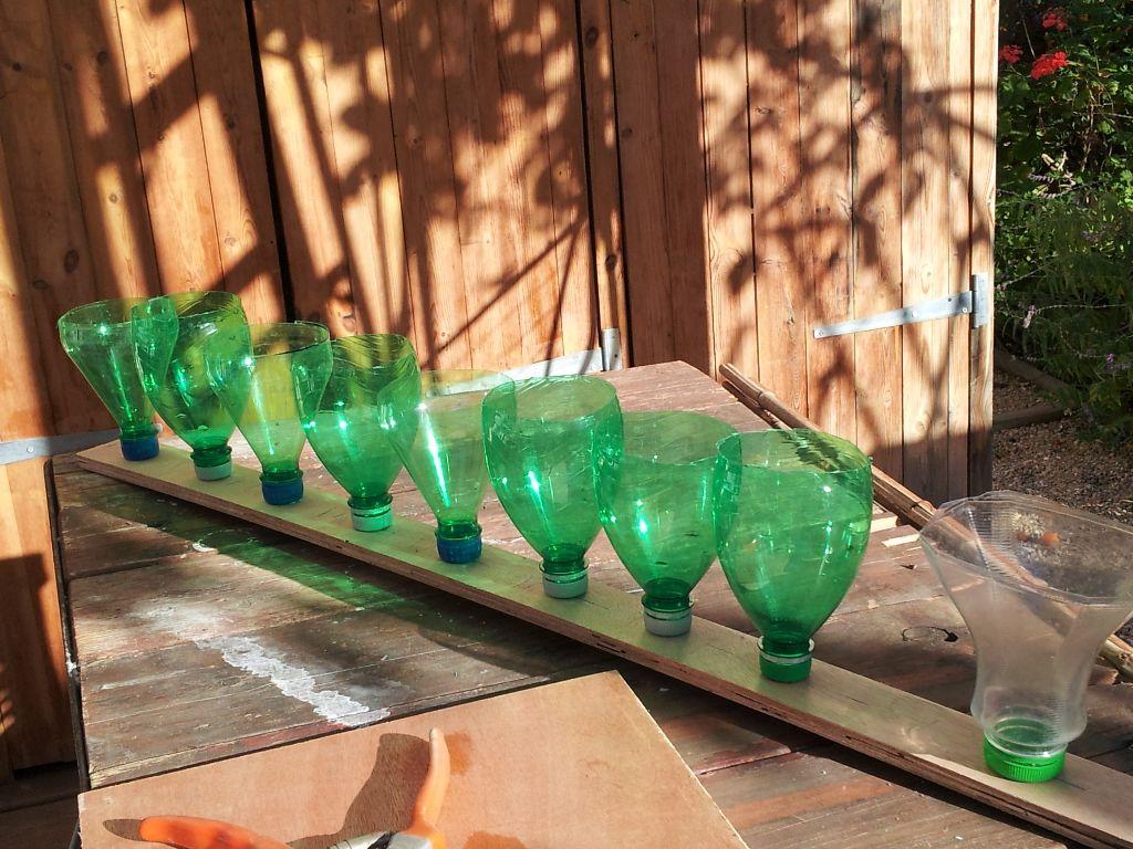 פיות הבקבוק מוברגות לפקקים