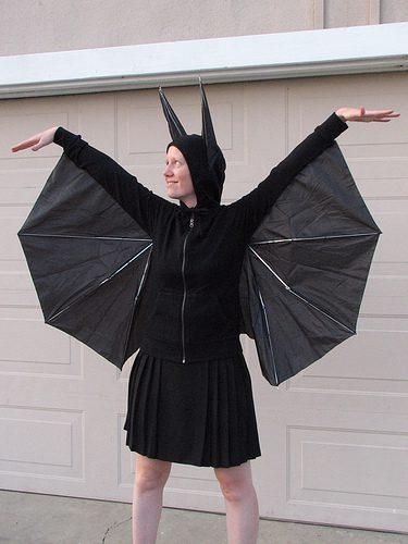 עטלף ממין נקבה, והכל ממטריה!