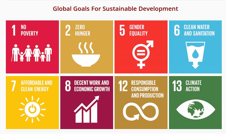 המטרות הגלובאליות על פי מימדי התחרות