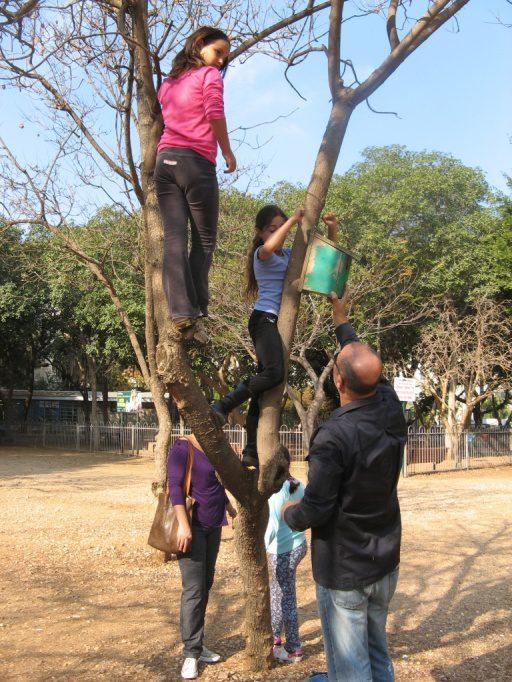 לסיום צילום מאירוע בו הוצאתי את הכיתה של בני לתלות כעשרים תיבות קינון שתרם בית הספר, בגינה הציבורית שמול ביתנו. למי ששכח כמה אהבנו פעם לטפס על עצים