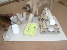 פאזל האכלה לחתול מגלילי נייר טואלט- בידיים