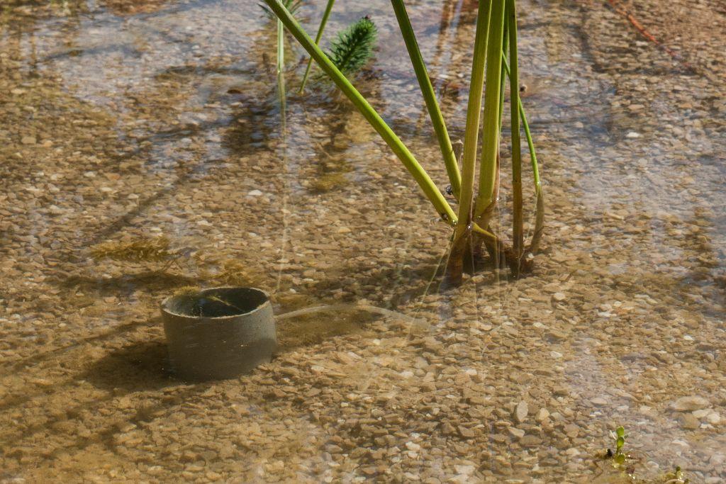 הצינור הרחב מתחת לפני המים