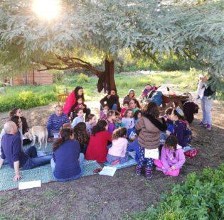 מפגש קהילתי ביער המאכל -שמורת רעות